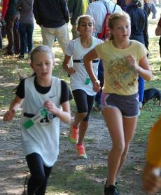 Individual Runner